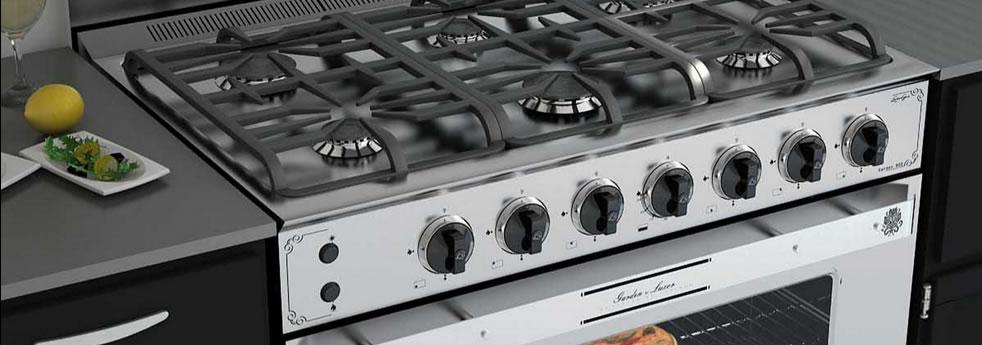 Hogar xxi parrillas cocinas hornos calefactores for Cocina industrial hogar